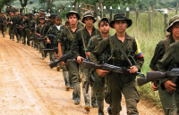 More and more voices are being heard in Colombia about the fate of child soldiers in the ranks of the FARC, or of those who were teenagers when they were recruited.