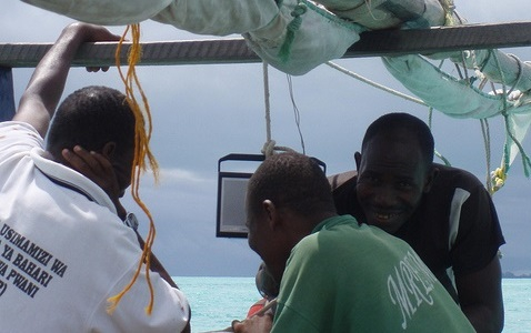 Les élections annulées à Zanzibar, les Etats-Unis « gravement alarmés »
