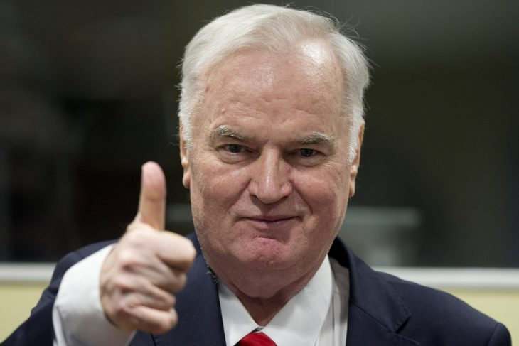 Mladic genocide verdict hailed as victory for justice