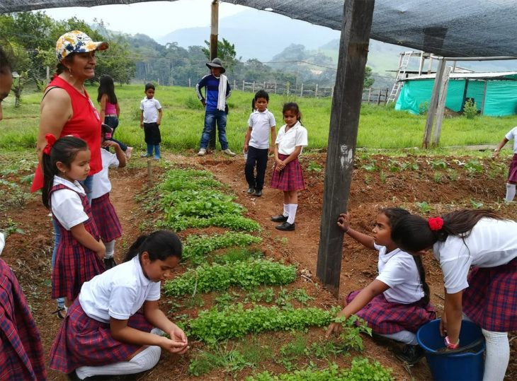 Covid-19 pushes reparations further away in Colombia